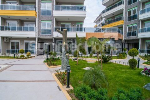 Perfect Apartments in Daisy Residence in Alanya - 7