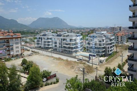 Crystal River Apartments - 4
