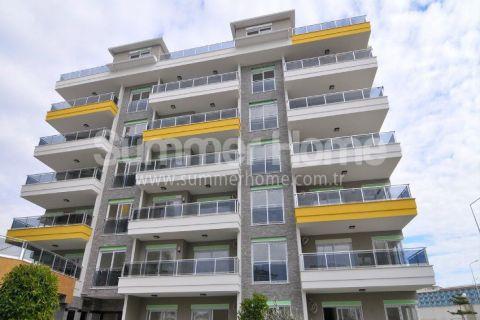 2 Zimmer Wohnung in Kestel/Alanya - 1
