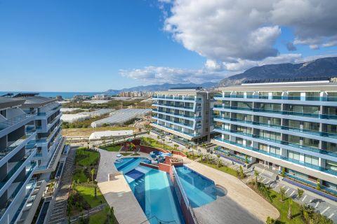شقة واسعة من غرفة نوم واحدة مع أثاث في كارجيجاك